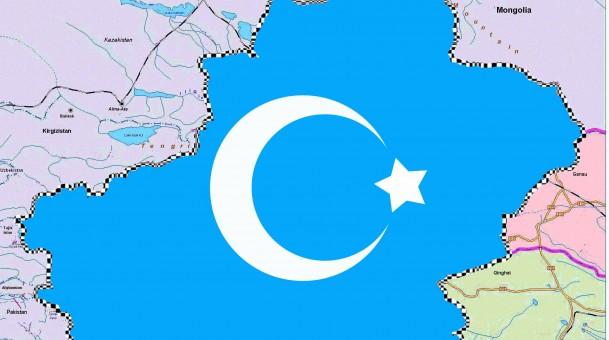 الكتاب: تركستان الشرقية، بين روعة الحضارة وقسوة الحاضر