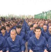 مليون مسلم من الإيغور تحتجزه الصين.. الأمم المتحدة: بكين تأخذ عينات من حمضهم النووي وتمنع سفرهم لسنوات